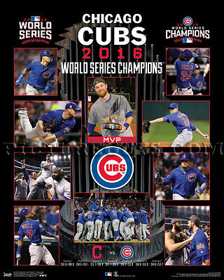 2016 Chicago Cubs World Series Championship Picture Plaque