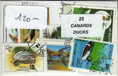 CANARDS 25 timbres différents