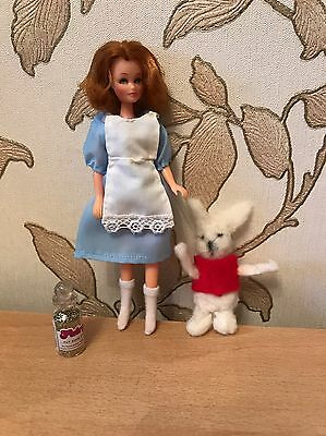 Pippa Doll Handmade Nursery Story Character Outfits,Alice In Wonderland