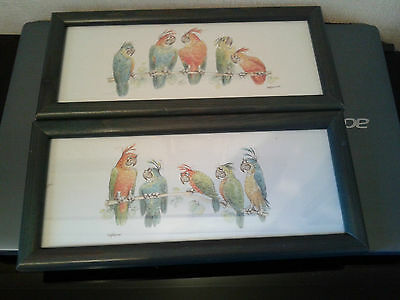 """Wooden  Framed  Pair  Of  Judy  Rossouw  Pictures  """" Talking  Parrots """""""