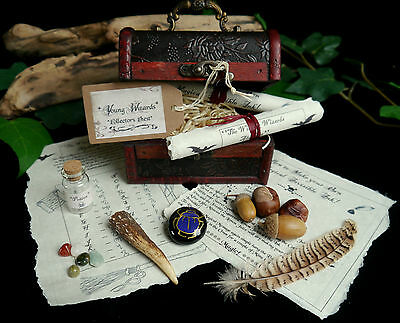 Young Wizards Collectors Chest  Wicca Pagan Crystals Potion Bottle Yule Gift