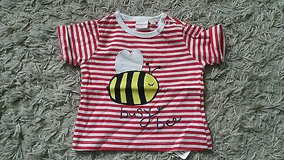 Cute girls busy bee t-shirt, 0-3 months, new without tags from bluezoo