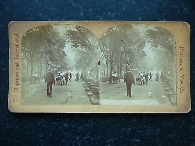 Stereoview Nice Early Image Of New York In Central Park Horse And Carriages