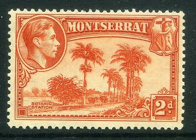 MONTSERRAT;  1938 early GVI issue fine Mint hinged Perf 13 issue, 2d. SP-245837