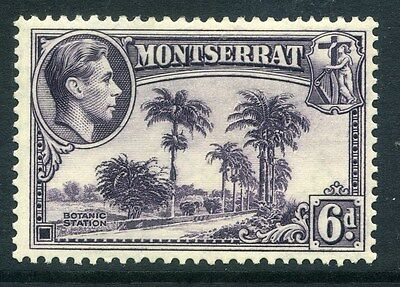 MONTSERRAT;  1938 early GVI issue fine Mint hinged Perf 13 issue, 6d. SP-245839