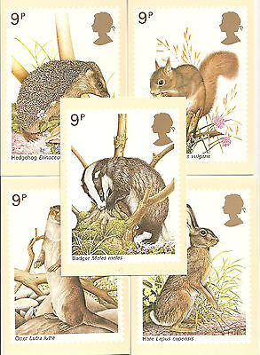 Great Britain - Animals - Post Card Phq25 -  Set  Of 5 - 1977