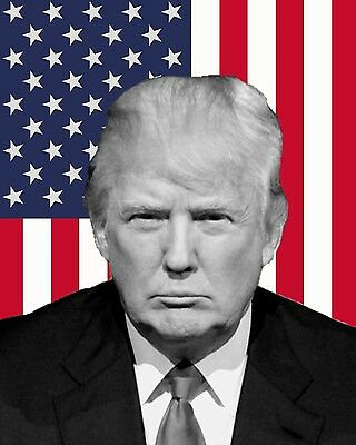 Donald Trump President American Flag 8 x 10 Photo Photograph Picture