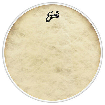 Evans Calftone 16 Inch Tom Batter Drum Head (NEW)