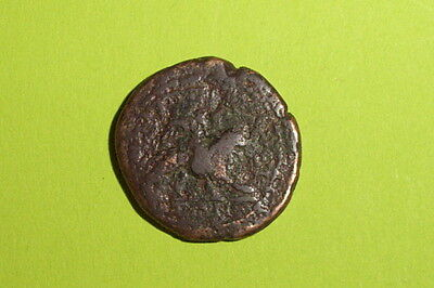 EXTREMELY RARE Ancient ROMAN COIN lion Eros CARACALLA PHILIPPOLIS THRACE cupid