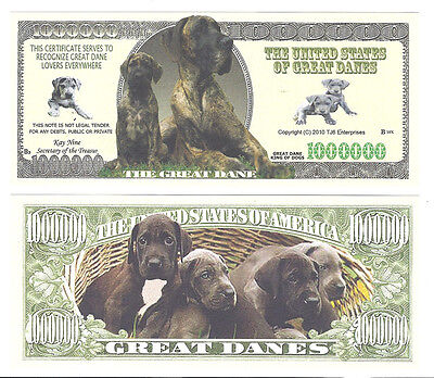 Dollar THE GREAT DANE  DOGGE King of Dogs