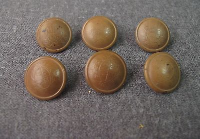 6 Antique Early 1900 Decorated With A Shield Tagua Nut Buttons