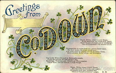 Ireland 1907 Greetings from Co. Down Divided Back Postcard half penny stamp