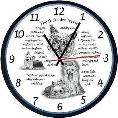 Yorkshire Terrier  Origins & Facts  Boxed Wall Clock