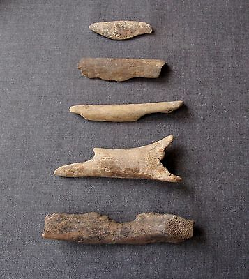 5 Early Neolithic European Bone Tools
