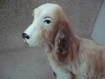 A Stunning Very Collectable  Vintage Spaniel Dog A Beautiful Looking Dog Indeed