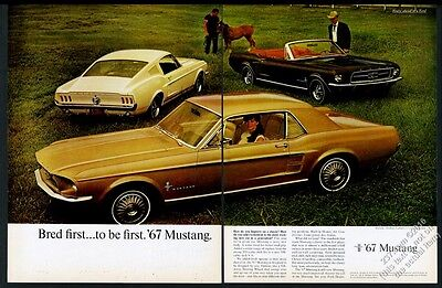 1967 Ford Mustang convertible fastback hardtop 3 car BIG color photo vintage ad