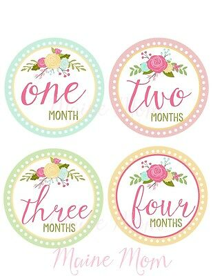 Monthly Baby Girl Stickers Floral Milestone Month Roses Gift Photo Prop Nursery