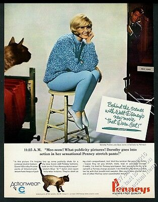 1965 Sealpoint Siamese That Darn Cat photo Penneys vintage print ad
