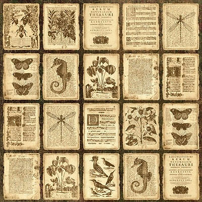 Graphic45 Botanicabella ANTIQUITY 12x12 Dbl-Sided (2) Papers *RETIRED*