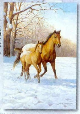 Xmas Cards Appaloosa MARE & FOAL HORSE Holiday Cards 10 per box