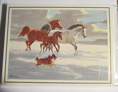 Xmas Cards ARABIAN HORSE FAMILY Holiday Christmas Cards 12 per pkg