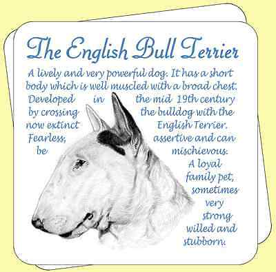 English Bull Terrier  Dog Origins And Breed Facts Pair Of Packed Wooden Coasters