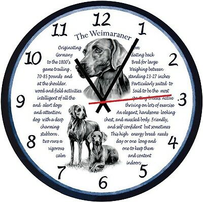 Weimaraner Dogs  Origins & Facts Gift Boxed Wall Clock