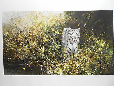 DAVID SHEPHERD~**THE WHITE TIGER of REWA**~SIGNED LIMITED PRINT