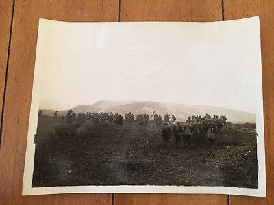 Official Military War Photo British Western Front Cambrai German Prisoners