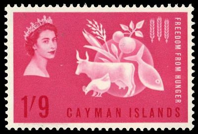 CAYMAN ISLANDS 168 (SG180) - Freedom from Hunger Campaign (pa75093)