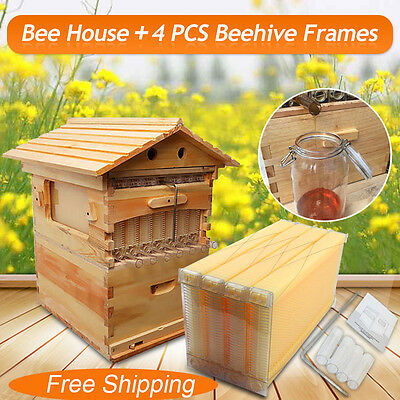 Mini Beehive Wooden House + 4 PCS Beekeeping Auto Flow Honey Hive Frames