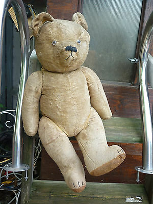 enorme Ours ancien nounours vintage - old vintage teddy bear - steff ? 60CM