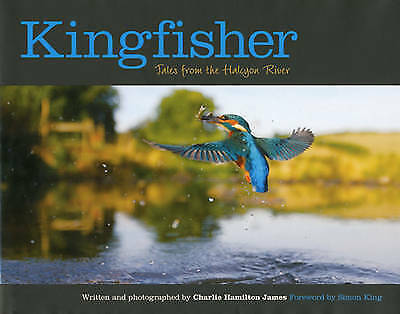 Kingfisher: Tales from the Halcyon River by Charlie Hamilton James (Hardback, 20