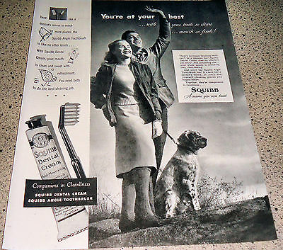 1947 English Setter Vintage Print Photo in Squibb Dental Cream Tooth Paste Ad