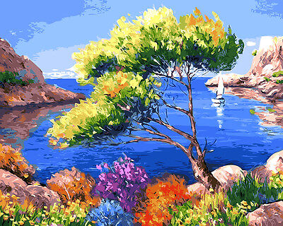 Framed Painting by Number kit Blue Sky Beautiful Bay Gulf Sea Tree DIY BB7633
