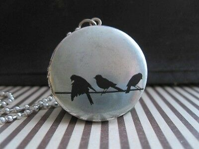 3 Sparrows On a Wire Blue Bird Art Photo Locket Silver Pendant Necklace Jewelry