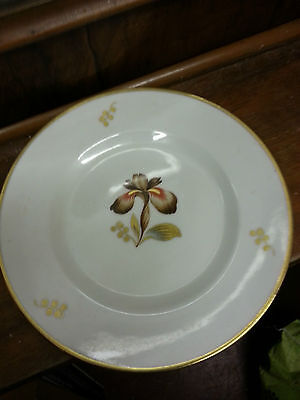 Royal Copenhagen small brown iris plate Excellent Condition FREE P&P