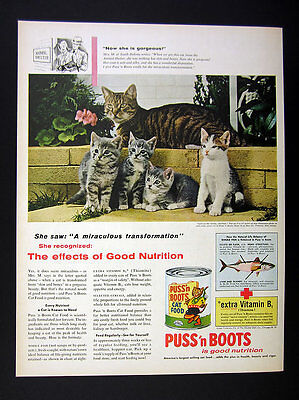 1956 Rescue Cat Story kittens tabby photo Puss 'n Boots Cat Food vintage Ad
