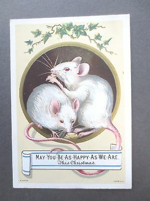 Antique Christmas Card R Canton Two Happy White Mice Eating Cheese Victorian