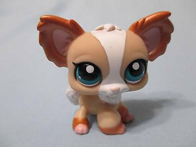 Littlest Pet Shop #1082 Tan,White & Bronze Pearlized Chihuahua 100% Authentic