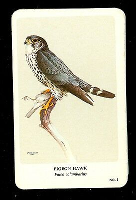 General Cigar Company, Montreal Bird Card Collection - Complete Set of 36 - 1968