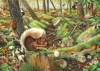 The House Of Puzzles - 1000 PIECE JIGSAW PUZZLE - Save Our Squirrels