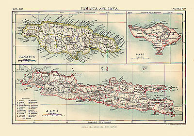 Tryptch Style 1880 Color Map of JAMAICA, JAVA & BALI - Detailed