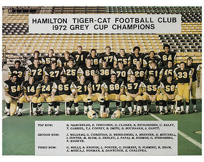 Hamilton Tiger-Cats - 1972 Grey Cup Champions, 8x10 Color Team Photo