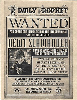 Harry Potter Daily Prophet Wanted Newt Scamander   Fantastic Beasts   Prop/Print