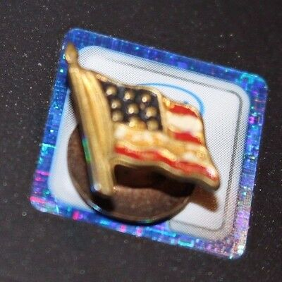 Vintage American Flag lapel button painted on brass 9 stars early 1900's