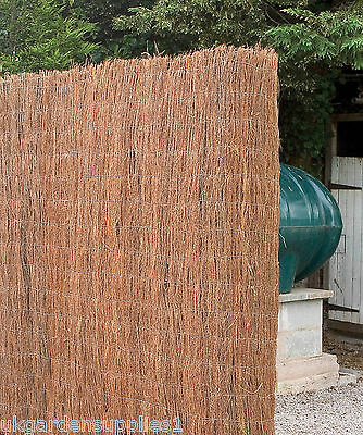 8m x 2m Brushwood Screening / Screen / Garden Fence / Fencing / Brush wood