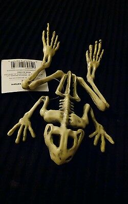 """Giant Frog Skeleton GOTH Christmas Party Decoration Gift Prop 9"""""""