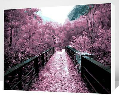 Painting by Number kit Purple Bridge Little Road Cherry Flowers Blossom QM7020