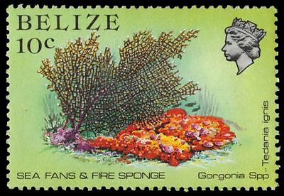 """BELIZE 705 (SG772) - Marine Life """"Gorgonia Coral and Fire Sponge"""" (pa54997)"""